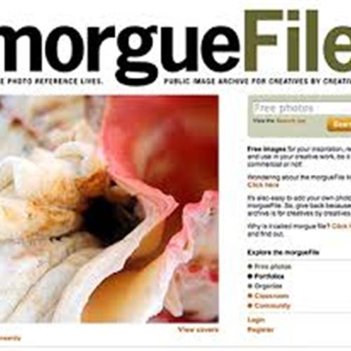 Morgue File (Public Domain Images)